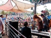 Free: Carrboro Music Festival