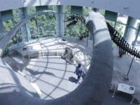 11 Things You Might Not Know About The North Carolina Museum of Natural Sciences
