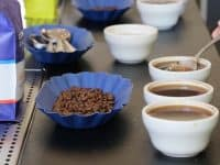 Tasting at Ten: Free tasting and tour at Counter Culture Coffee HQ