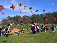 Annual Kite Festival in Cary