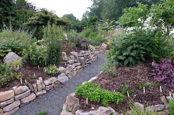 Plant Delights Nursery At 9241 Sauls Rd Raleigh Is Holding Its 2018 Summer Open And Garden Days Fridays Through Sundays July 6th