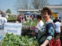 19th Annual Wake Forest HerbFest
