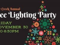 Brier Creek Annual Tree Lighting Party
